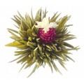 Цветущий (распускающийся) чай - живые чайные листы